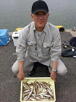 キスゴ釣果写真