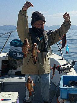 メバル釣果写真